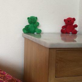 Het Rode en Groene beertje